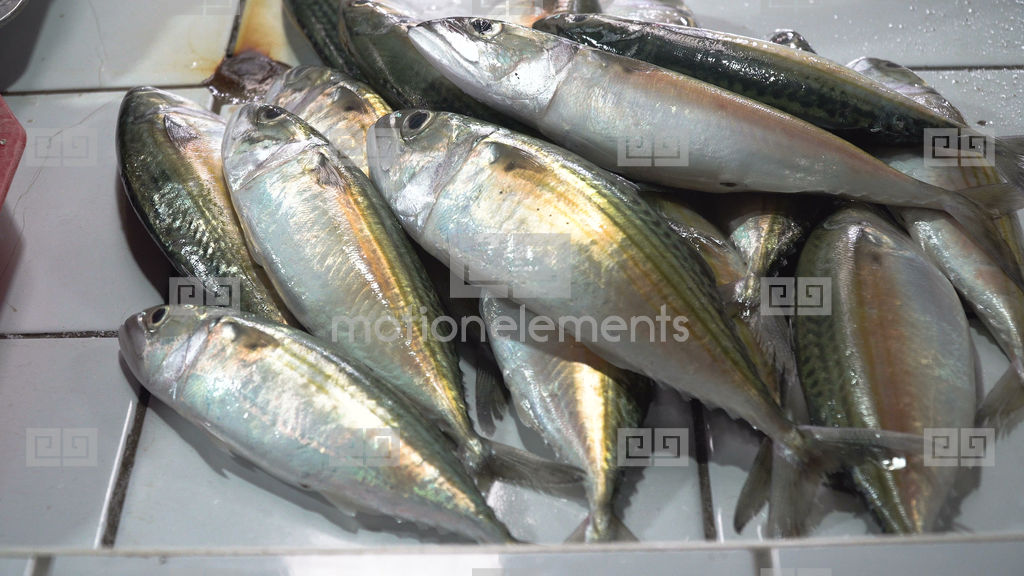 Fish in asian market stock video footage 10007012 for Oriental fish market