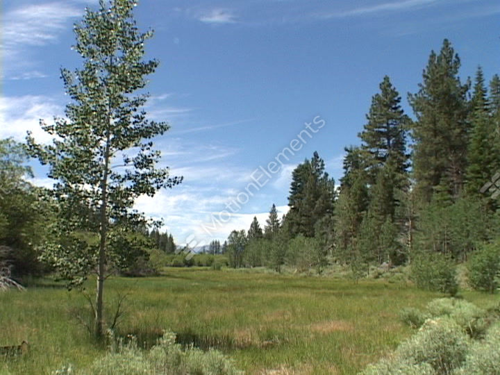 grassy meadows hispanic single men Intro if you love meandering single track trails through peaceful aspen groves, grassy meadows, tranquil pine forests and rocky ridges with majestic views of snow capped mountains, you will.