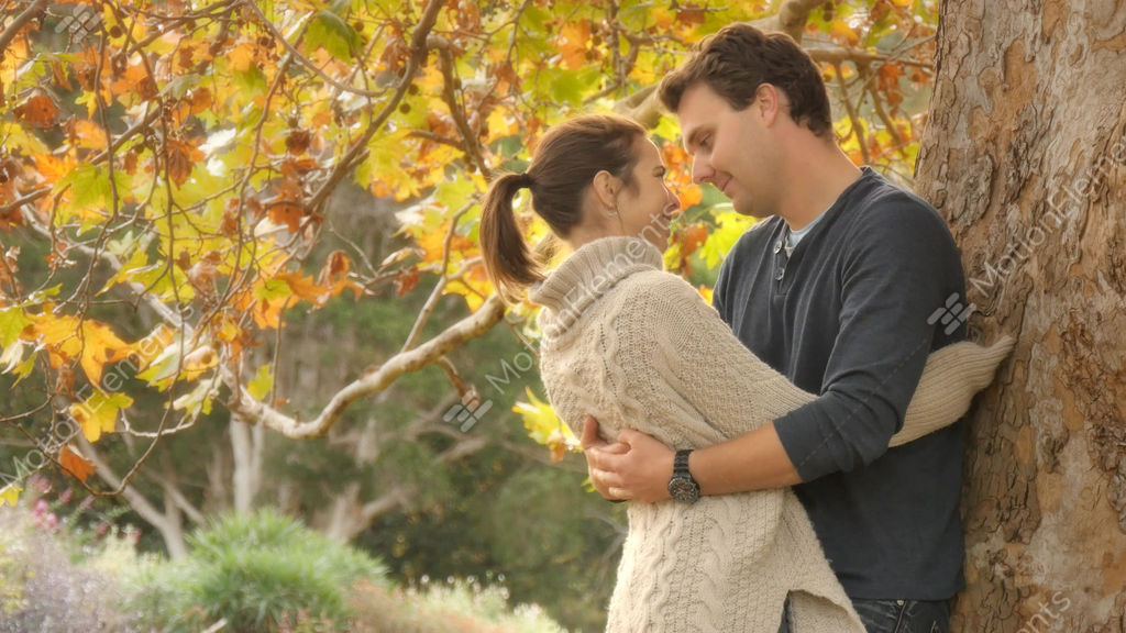 Autumn fall season romance young couple in love hug and cuddle under tree stock video footage autumn fall season romance young couple in love hug and stock video footage altavistaventures Choice Image