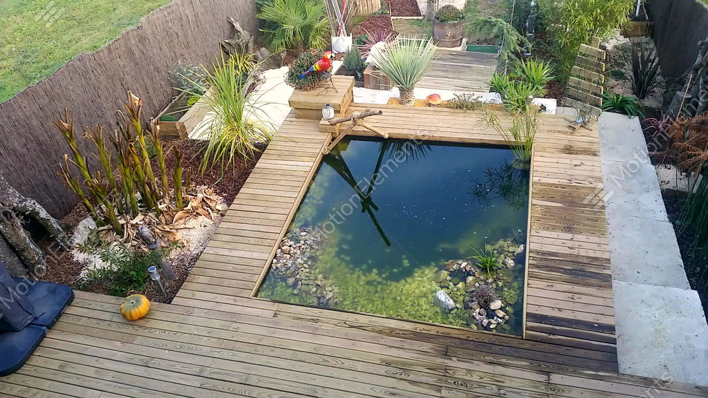Rectangular Garden Pond Stock Video Footage 9578761