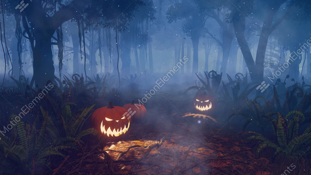 halloween pumpkins in magical night forest stock video footage