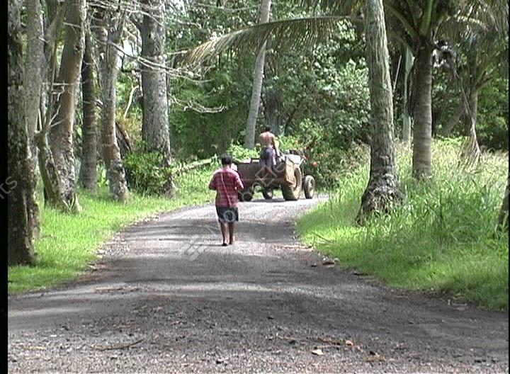 boy walking alone on road - photo #11