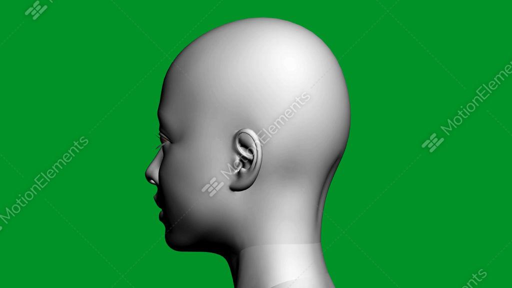 Rotation Of 3d Woman Head Facefemalegirlhumananatomymedical