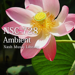 32-Ambient 1